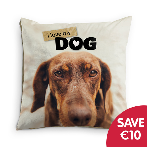 Save €10 on 60x60cm Cushion