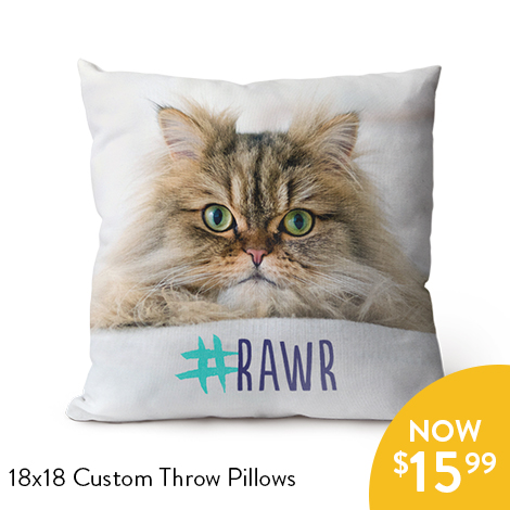 LIMITED TIME! 60% off 18x18 Custom Throw Pillows