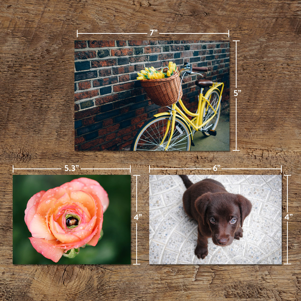 7x5 18x13cm photo prints gloss finish regular prints prints