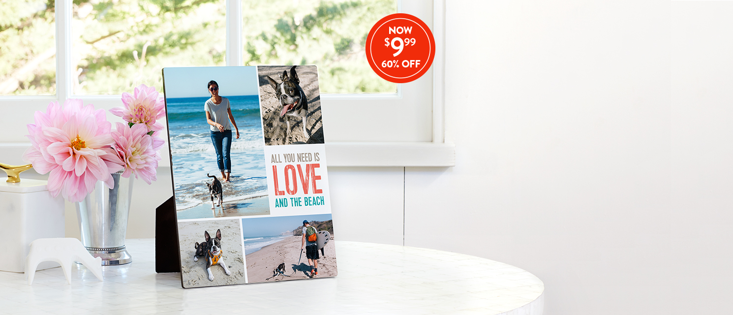 Pawsitively perfect : Showcase every member of the family on an 8x10 Tabletop Panel. Use 999PANEL
