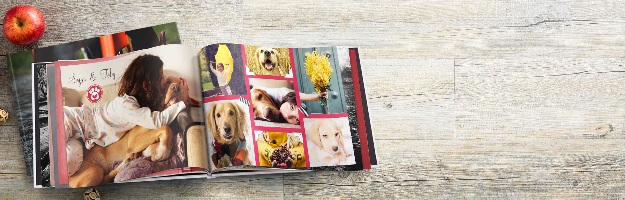 Zauberhaft : Wählen Sie ein Design und Autofill um Ihre Fotos sofort hinzuzufügen.