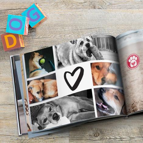 5 Tipps für ein tierisch perfektes Fotobuch