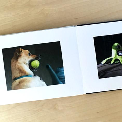 Pet Photo Book