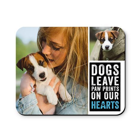 Dogs Paw Print