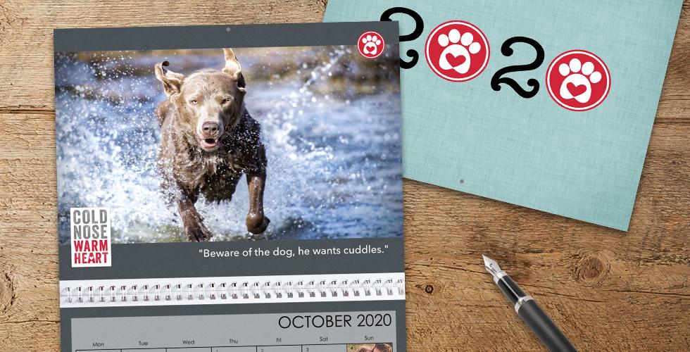 Photo Calendar Creation