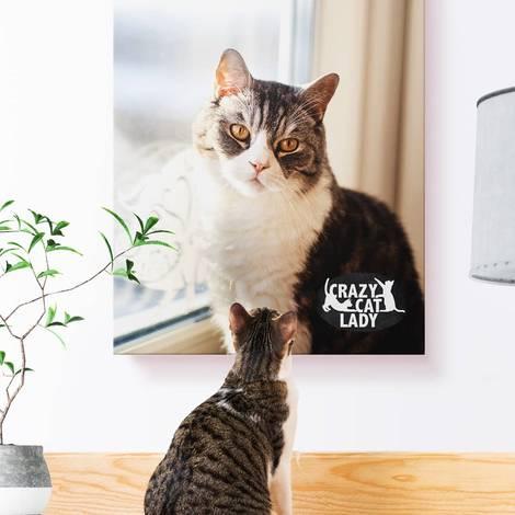cat looking at a cat canvas