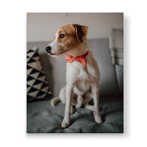 portrait canvas with image of a pet dog