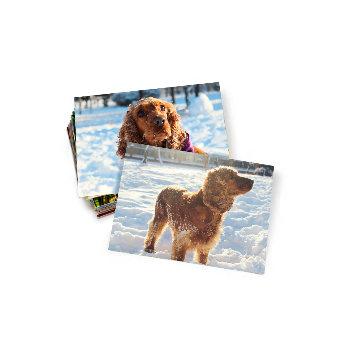 """An image of 5.3"""" x 4"""" (13x10cm) Personalised Photo Prints - Gloss   By Truprint"""