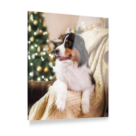 Acrylic Photo Prints From £34.99